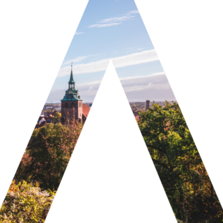 Sallier Immobilien Logo A Skyline Lüneburg Michaeliskirche